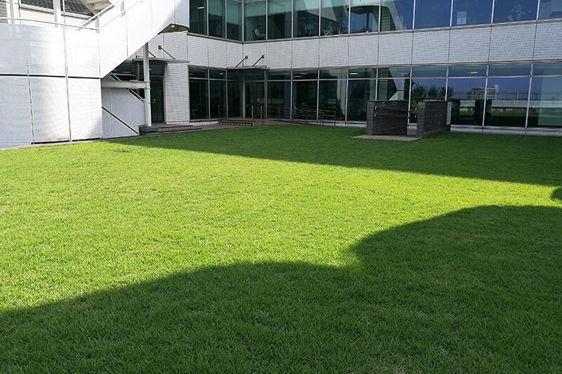 浦和パルコに芝生の広場? 駅前なのに落ち着けるコムナーレを有効活用しよう