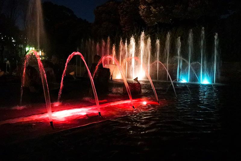 北浦和公園 夜のイルミネーション噴水