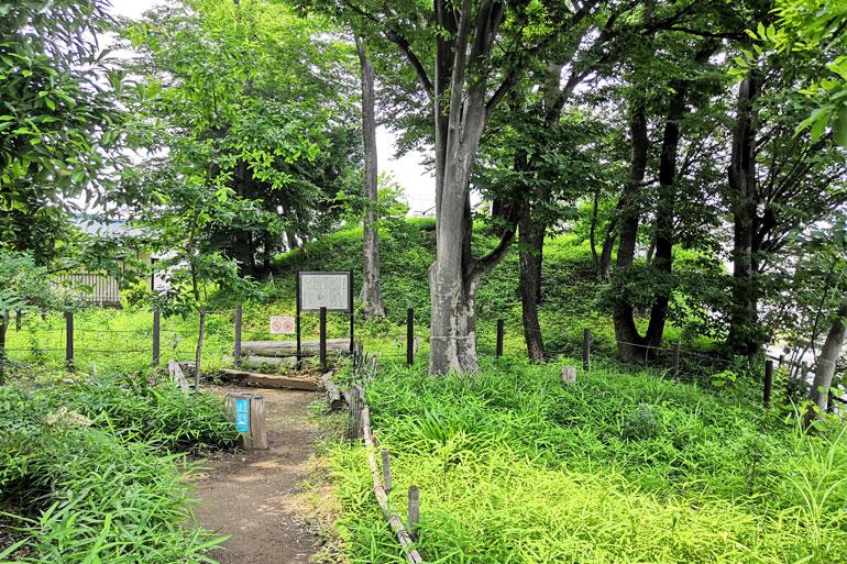 中島本杢緑地