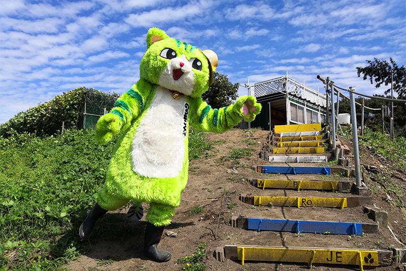 浦和のゆるキャラ「のらねこくん」がゆるキャラグランプリ2020にエントリー!