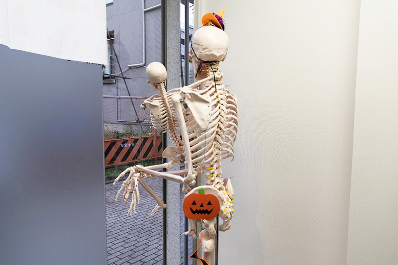 Body Laboにいる骸骨