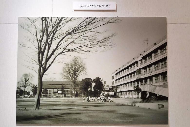 伊勢丹浦和店40周年記念写真展を見てきた!